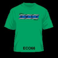 ECO66
