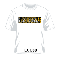ECO80