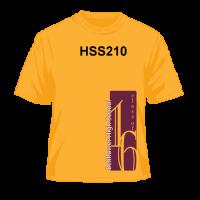HSS210